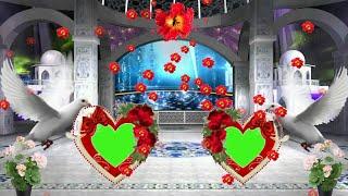 Wedding photo frame green screen effect full hd project amp; 10