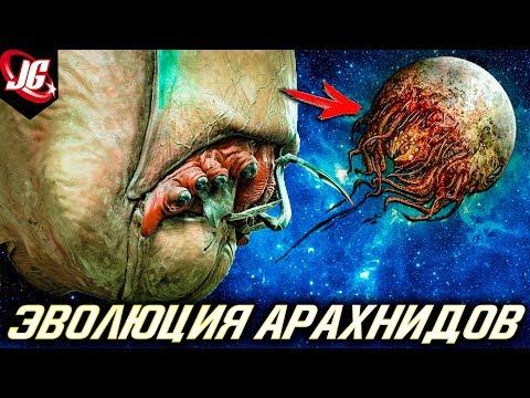 Арахниды: Строение, Виды, Иерархия, Эволюция (Звёздный десант)