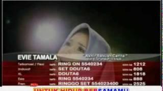 Evie Tamala - Akhir Sebuah Cerita (Vidio Clip   Lyrics).flv