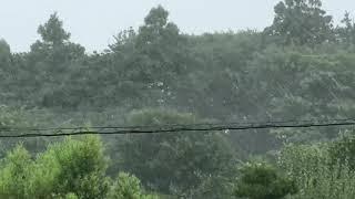 屋内から撮影しています。 台風12号の影響で北東からの強い風と横殴り...