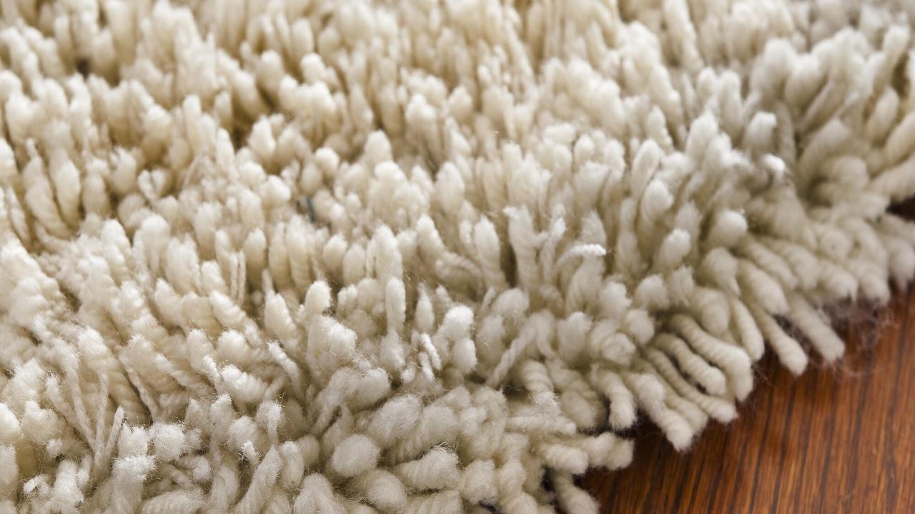 Shag Carpet Cleaning DC MD VA Wool Shag Rug Cleaners