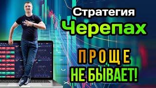 Стратегия Черепах для рынка Forex Как зарабатывать до 10 в месяц
