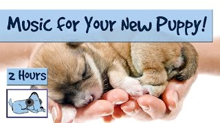 Anti-Anxiety Music for Newly Homed Puppies! Relax Your New Puppy with Soothing Sounds