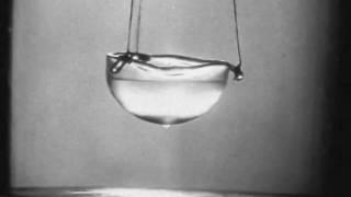 Liquid Helium II the superfluid (part 5 The Rollin film)