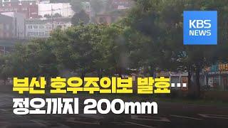 부산 호우주의보·강풍 예비특보…해안가 시간당 50mm 폭우 / KBS뉴스(News)
