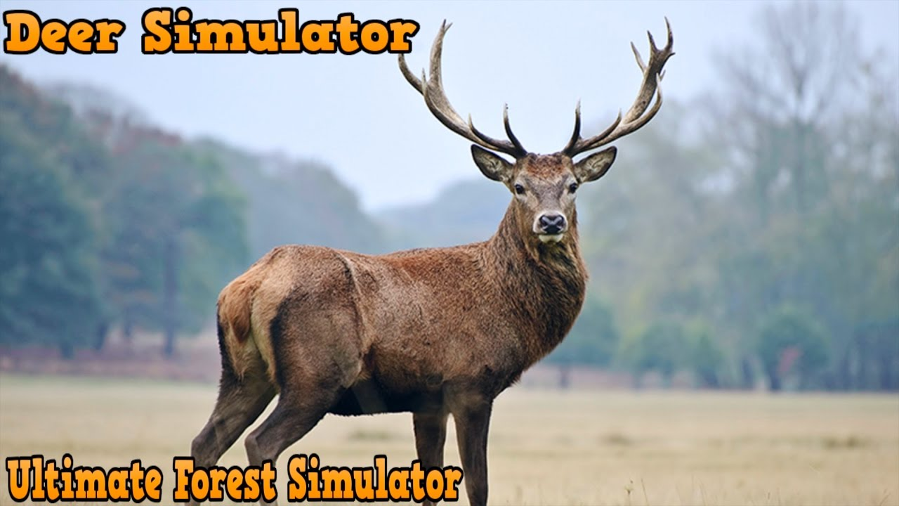 Deer Simulator-СИМУЛЯТОР ОЛЕНЯ-Forest Simulator-By Gluten ...