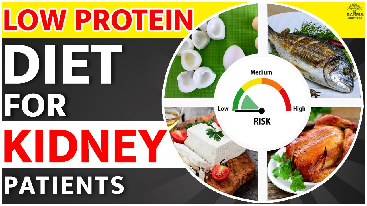 How To Follow Low Protein Diet For Kidney Patient Low Protein Diet Chart To Avoid Kidney Failure Youtube