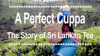 Perfect Cuppa: The Story of Sri Lankan Tea