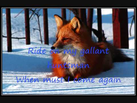 Lyrics- Black Fox