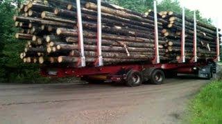 Scania R620 timmerbil i skogen