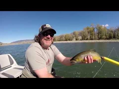Fly Fishing - Yellowstone River - Montana