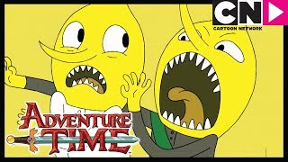Время приключений Ещё пять новых приключариков Cartoon Network