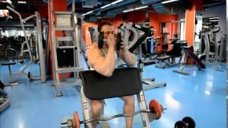Бицепс на скамье Скотта со штангой, гантелей и в тренажере