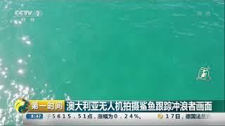 [第一时间]澳大利亚无人机拍摄鲨鱼跟踪冲浪者画面| CCTV财经