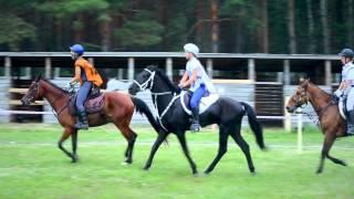 Кубок России по конным пробегам 2014