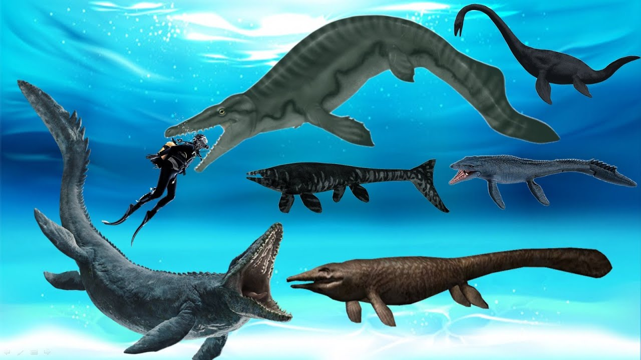 Download 20 Largest Mosasaurs that Once Ruled the World