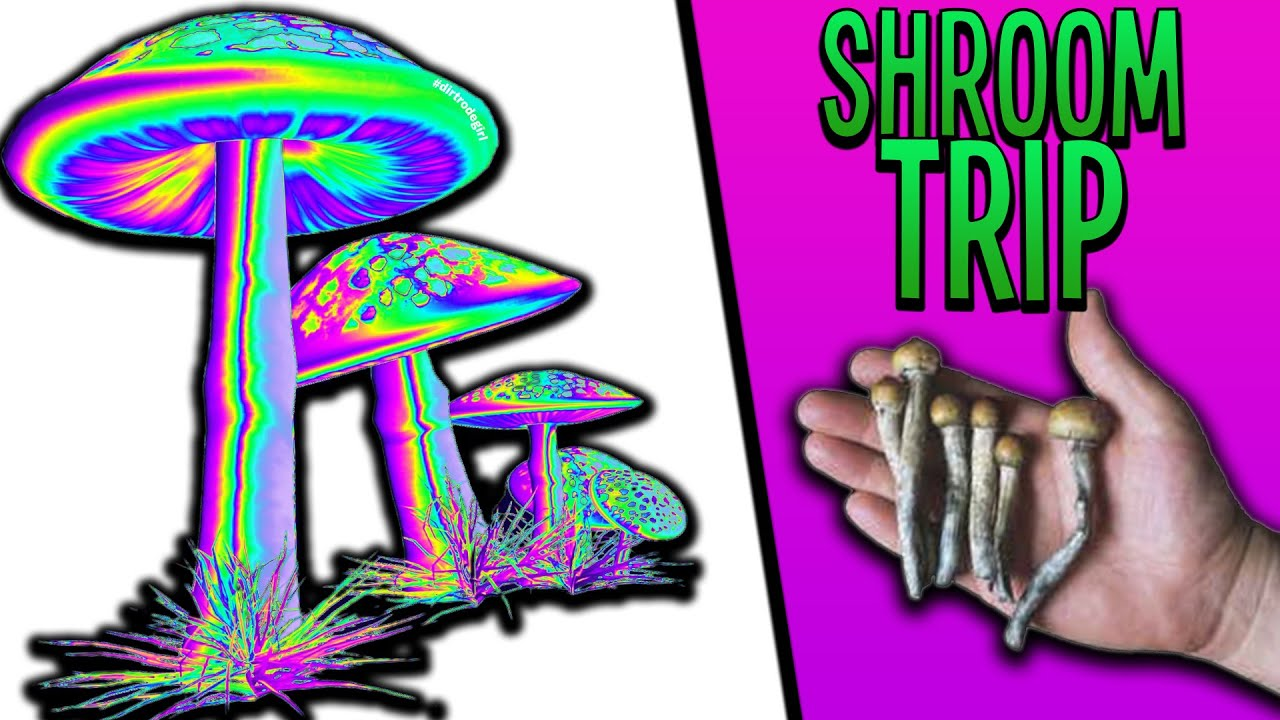 Download I Tried Shrooms Again...