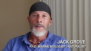 Sea Shepherd Science – Biologist Jack Grove on Sea Shepherd and Preserving Galapagos Islands
