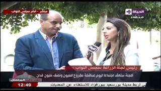 برلماني: قصب السكر محصول أمن قومي.. وأعاتب رئيس الوزراء لتجاهل منتجيه