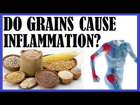 Do Grains Cause Inflammation? Dr Michael Greger