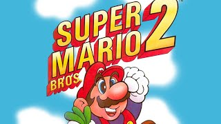 Super Mario Bros. 2 (dunkview)