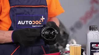 Πώς αλλαζω Σινεμπλοκ Ζαμφορ ALFA ROMEO 159 Sportwagon (939) - οδηγός βίντεο