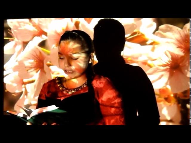 Изображение предпросмотра прочтения – ЕлизаветаКурганская читает произведение «Явстретил вас— ивсе былое…» Ф.И.Тютчева