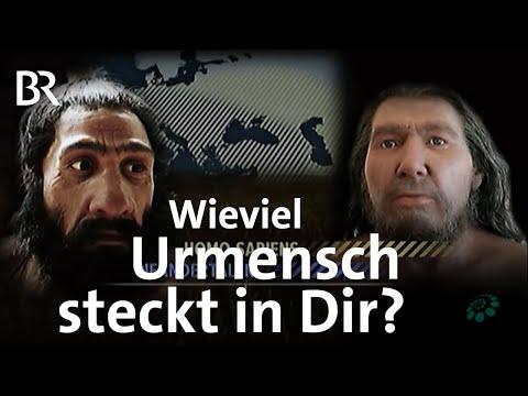 Der Urmensch in uns - Faszination Wissen - ganze Sendung 31.1.17