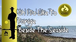 oh I do like to forage by the seaside