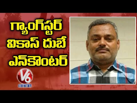 Gangster Vikas Dubey Encountered In Kanpur   UttarPradesh   V6 News