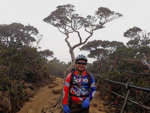 Rizzku Everything You Need to Know About Climbing Mount Kinabalu Nov 2017