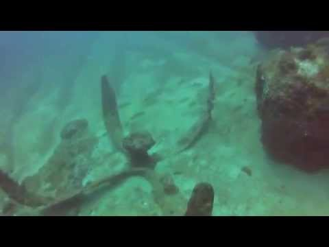 WWII B-29 Bomber Wreck - Ecological & Archaeological Research