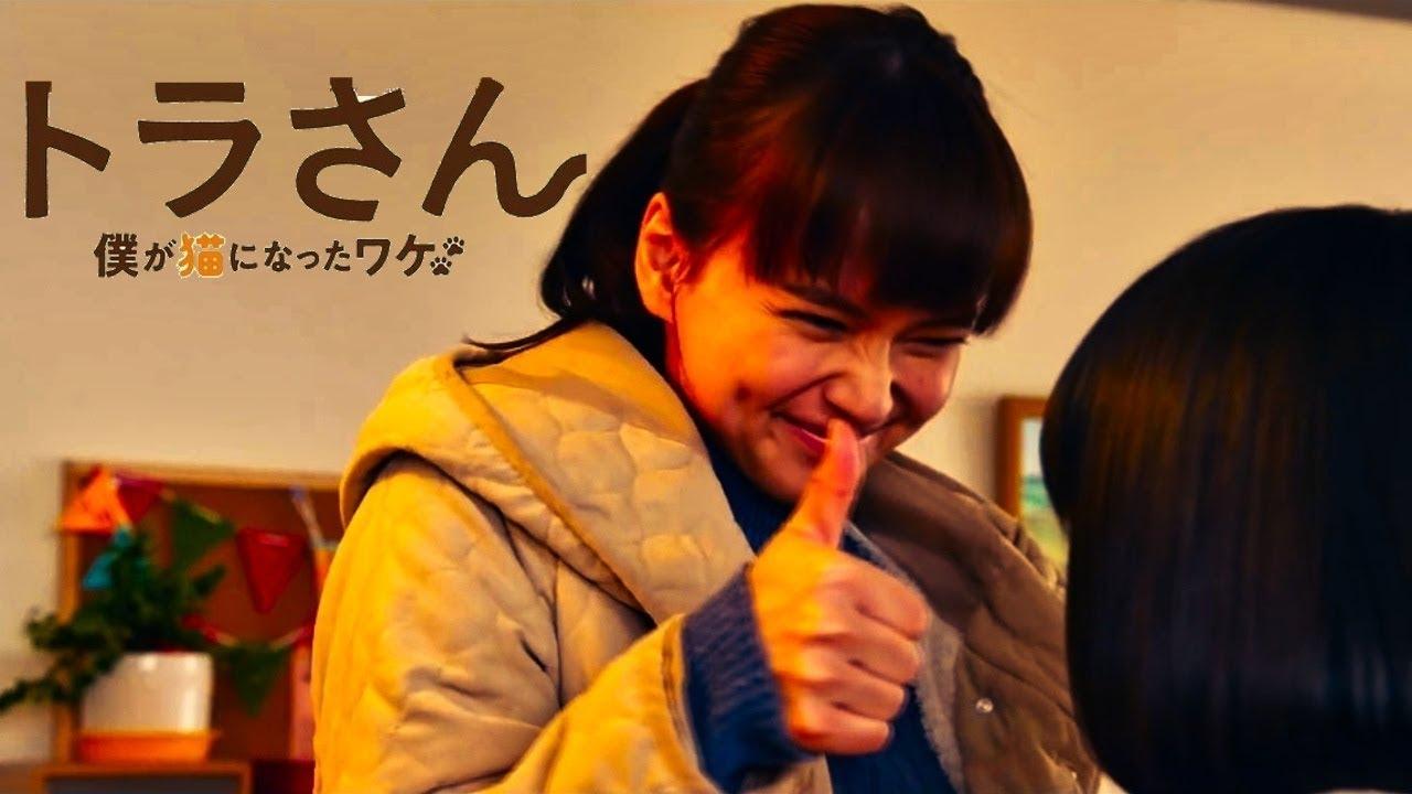 El Live-Action『Tora-san ~ Boku ga Neko ni Natta Wake ~』revela tráiler.