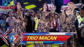 Gambar cover Sidoarjo Menggema, Trio Macan [IWAK PEYEK] - Kilau Raya MNCTV 27 (20/10)