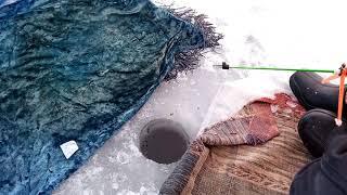 Зимняя рыбалка на озере Сиг