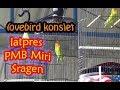 Lomba Burung Lovebird Latpres PMB Miri Sragen November '17
