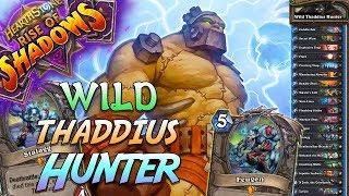 Wild Thaddius Hunter Deck   Rise of Shadows   Hearthstone