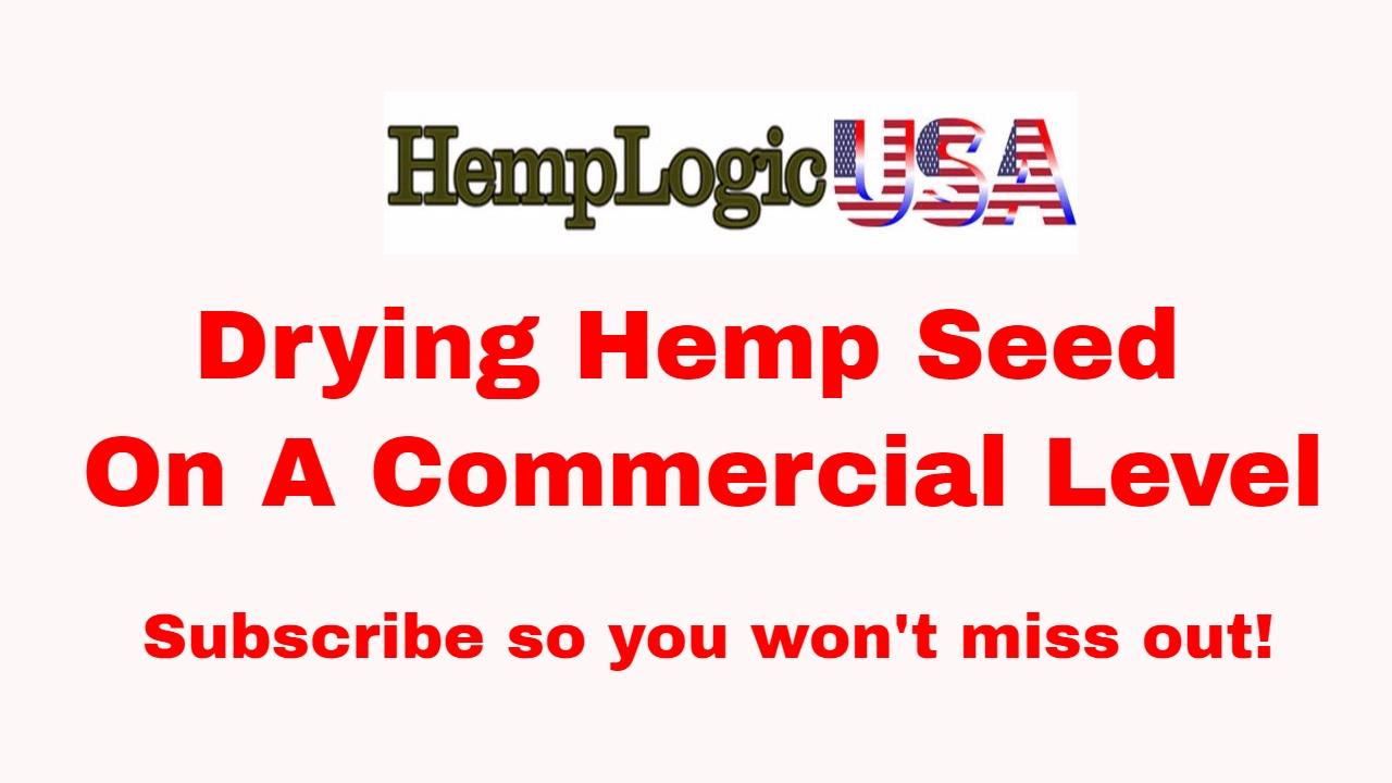 Drying Industrial Hemp Seed