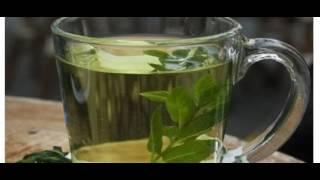 Виды травяного чая, о которых вы точно не знали!