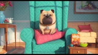 Sekretne życie zwierzaków domowych officjal trailer HD