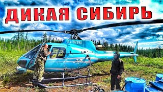 Дикая Сибирь L Мишаня На Плато L Жарим Рыбу Ч3