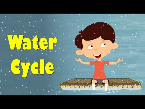 Water Cycle Explanation for Kids