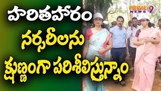 Telangana Haritha Haram OSD Priyanka & Collector Sweta Inspects Wanaparthy Nurseries | Prime9 News