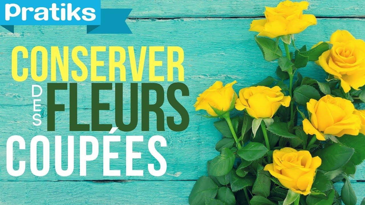 Comment Conserver Des Fleurs Séchées comment conserver des fleurs coupées