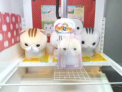 Toreba Fishing Machine Win! [Chimari Munchkin BIG B]! Cute