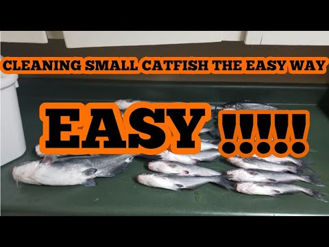 HOW TO CLEAN SMALL CATFISH THE EASY WAY!!!!