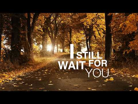 I Still Wait For You - XYLO (Audio)