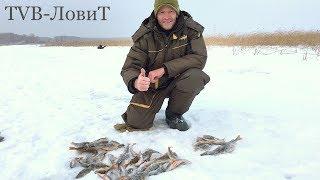 Зимняя рыбалка! Ловля окуня на дорогую мормышку которая ловит всё!