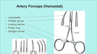 Difference Between the Needle Holder and the Artery Forceps (Hemostat)