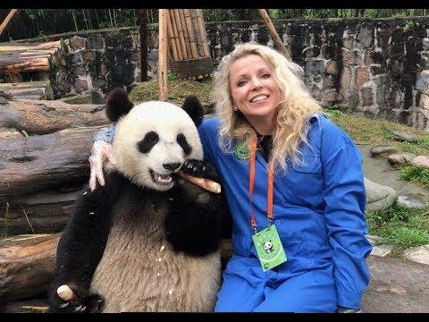 PANDAS IN CHENGDU, CHINA- WE HUGGED A BABY PANDA!!! BEST BIRTHDAY EVER!